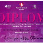 Diplom - bronzové pásmo, MFDMPS Soutěž o cenu Miroslava Raichla